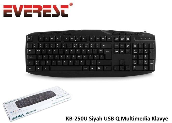EVEREST KB-250U Siyah USB Q Multimedia Klavye